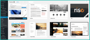 wordpress appearance section