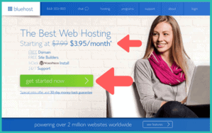 bluehost discount chillreptile