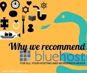 why we recommend bluehost