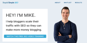 stupid simple seo affiliate marketing course review